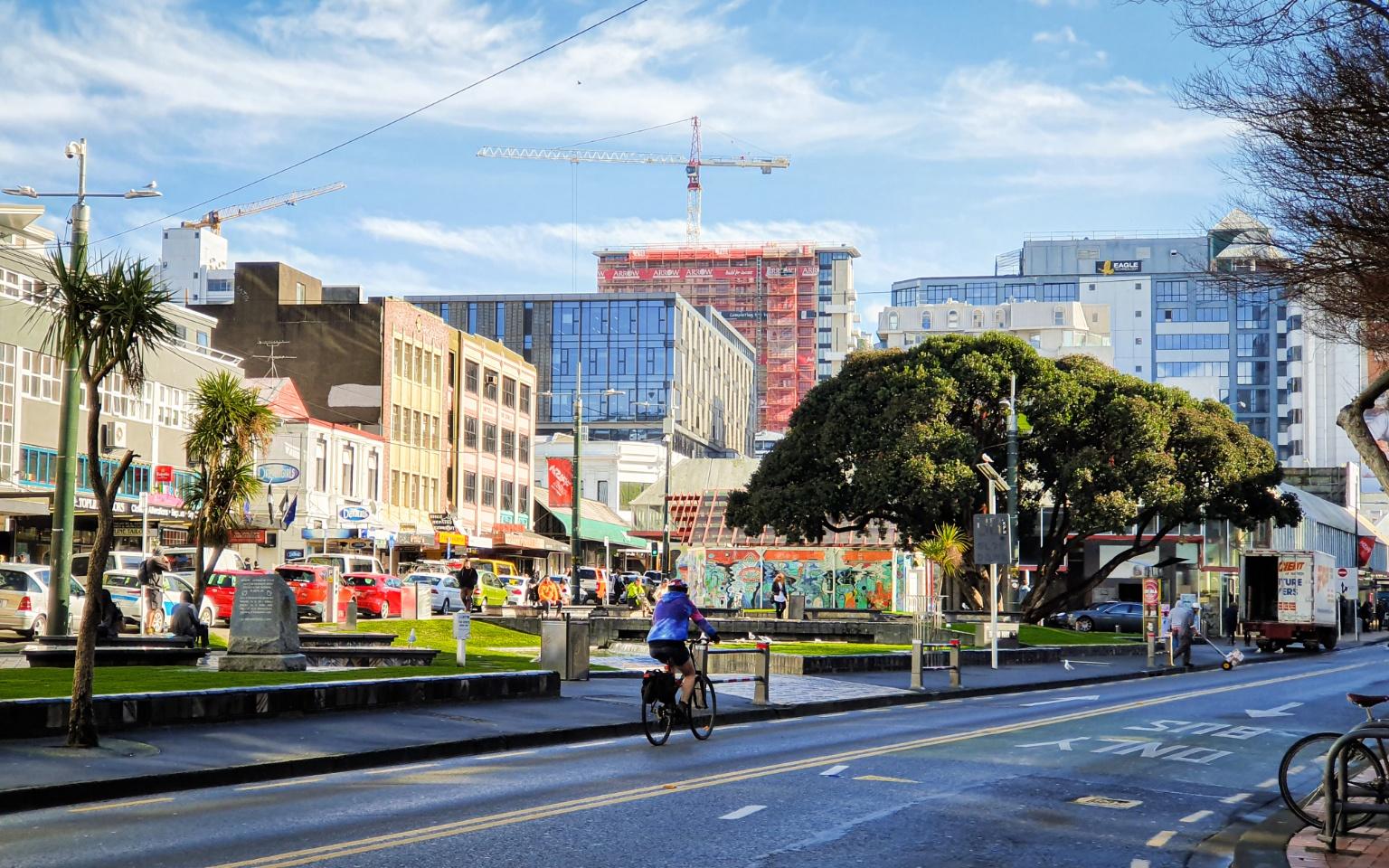 【紐西蘭威靈頓】威靈頓文化觀光半日遊