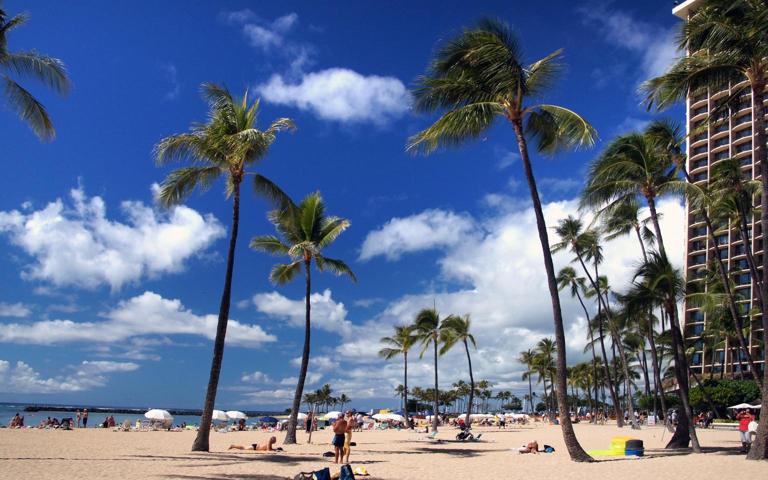 【美國夏威夷】歐胡島環島精華半日遊